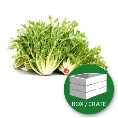 French Frisee Salad - 4kg Box