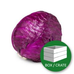 Cavolo Rosso _ Red Cabbage - Box (10Kg Approx.)