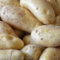Chipping Potatoes Unwashed - Price per kg